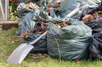 Affordable Local Garden Waste Removal/Garden Waste Removals